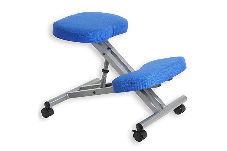 Idimex Robert aluminium/bleu : test et avis de la rédaction sur cette chaise ergonomique